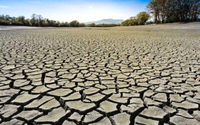 Klimawandel wichtigstes Thema der Generation Z