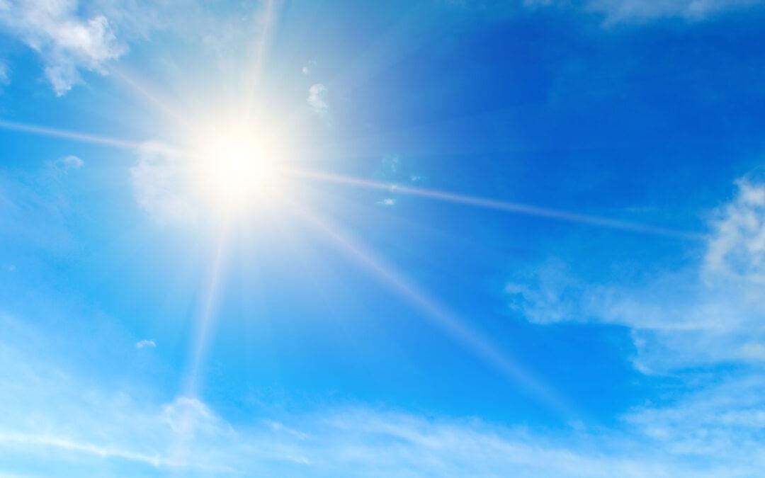 Sonnenbrillen von Volz: Stilsicher in der Sonne