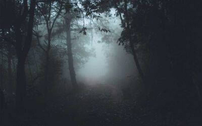 Ist Suizidbeihilfe Aufgabe der Diakonie?